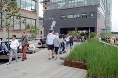 Парк Нью-Йорк Том Wurl высокой ветки Стоковое Изображение