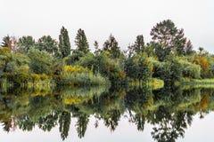 Парк озера форел в Ванкувере, Канаде Стоковое Фото