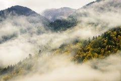 Парк озера Chilliwack захолустный в тумане Стоковое Изображение