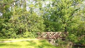 Парк озера Onondaga видеоматериал