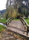 парк окружающий Стоковое Изображение RF