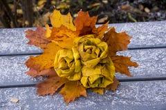 Парк осени, букет роз сделанных от упаденных кленовых листов лежит Стоковые Изображения RF