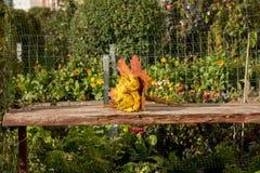 Парк осени, букет роз сделанных от упаденных leaveslies клена Стоковое фото RF