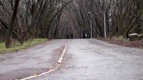 Парк осени в пасмурной погоде сток-видео