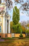 парк осени золотистый Стоковая Фотография RF