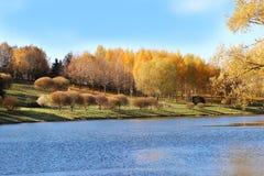 парк осени красивейший Осень в Минске валы листьев осени Ландшафт осени Парк в осени Пуща в осени Стоковая Фотография