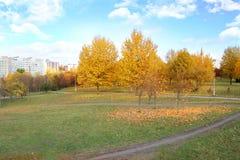 парк осени красивейший Осень в Минске валы листьев осени Ландшафт осени Парк в осени Пуща в осени Стоковая Фотография RF