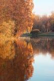парк осени красивейший Осень в Минске валы листьев осени Ландшафт осени Парк в осени Отражение зеркала деревьев в wa Стоковое Изображение RF
