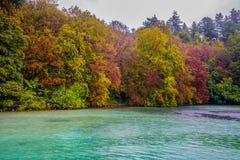 парк осени красивейший Осень в парке Plitvice, Хорватия, валы листьев осени Ландшафт осени Парк в осени Лес в Aut Стоковое Изображение