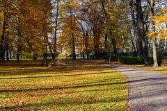 парк осени красивейший Осень в Риге Стоковое Изображение