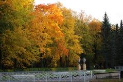 парк осени красивейший Стоковые Фотографии RF