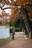 парк осени старый Стоковое Фото