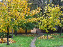 парк осени Стоковая Фотография