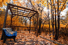 Парк осени Стоковое Изображение