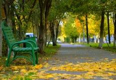 Парк осенью стоковые изображения rf