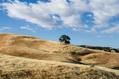 Парк долины лагуны стоковая фотография