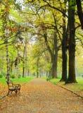 парк падения Стоковое Фото