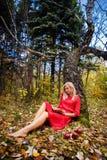 Парк падения девушки выходит деревья, книга Стоковые Изображения RF