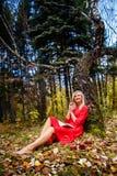 Парк падения девушки выходит деревья, книга Стоковая Фотография RF