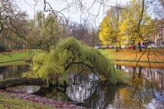 Парк падения Стоковое Изображение