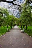 парк переулка Стоковое Изображение RF