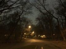 Парк перспективы на ноче Стоковые Изображения RF