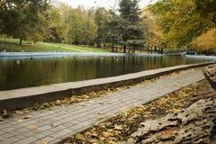 Парк победы Одессы Стоковое фото RF