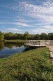 парк после полудня Стоковые Фотографии RF