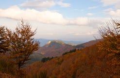 парк природы montseny осени стоковые изображения rf