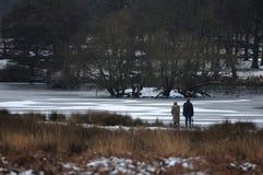 Парк Ричмонда в снеге Стоковые Изображения RF