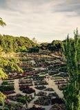 Парк розария с королевским дворцом Мадрида стоковые изображения