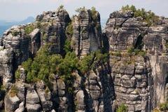 парк Саксония Германии Стоковое Изображение RF