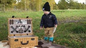 парк семьи picnicking сток-видео