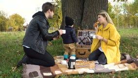 парк семьи picnicking видеоматериал
