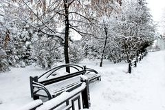Парк сибиряка Snowy стоковая фотография