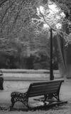Парк снега, магазин, фонарик Стоковые Фото
