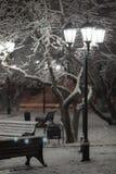 Парк снега при удобный освещенный стенд, фонарику Стоковые Фото