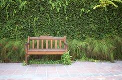 парк стенда зеленый Стоковое Изображение