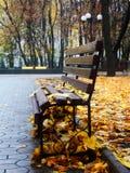 парк стенда осени пустой Стоковое Изображение RF