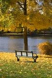 парк стенда осени Стоковые Изображения