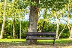 Парк стенда публично Стоковое Изображение