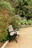 парк стенда тропический стоковая фотография rf