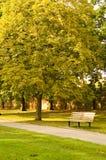 парк стенда Стоковое фото RF