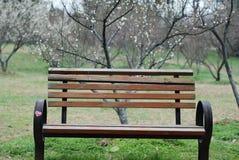 парк стенда Стоковое Фото