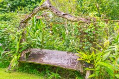 парк стенда зеленый Стоковое Фото