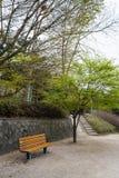 Парк стула публично Стоковые Изображения
