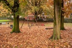 Парк с листьями осени t стоковое фото rf
