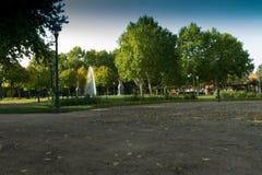 Парк с много красочными растительностью и фонтаном стоковое фото