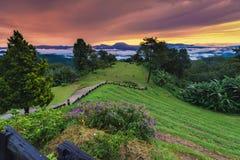 парк Таиланд pai nam huai dang национальный стоковое изображение