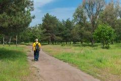 Парк тропы весной Стоковая Фотография RF